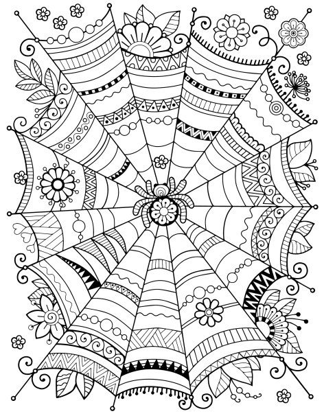19-zentangle-spider-web